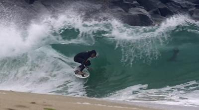 Wedge Madness